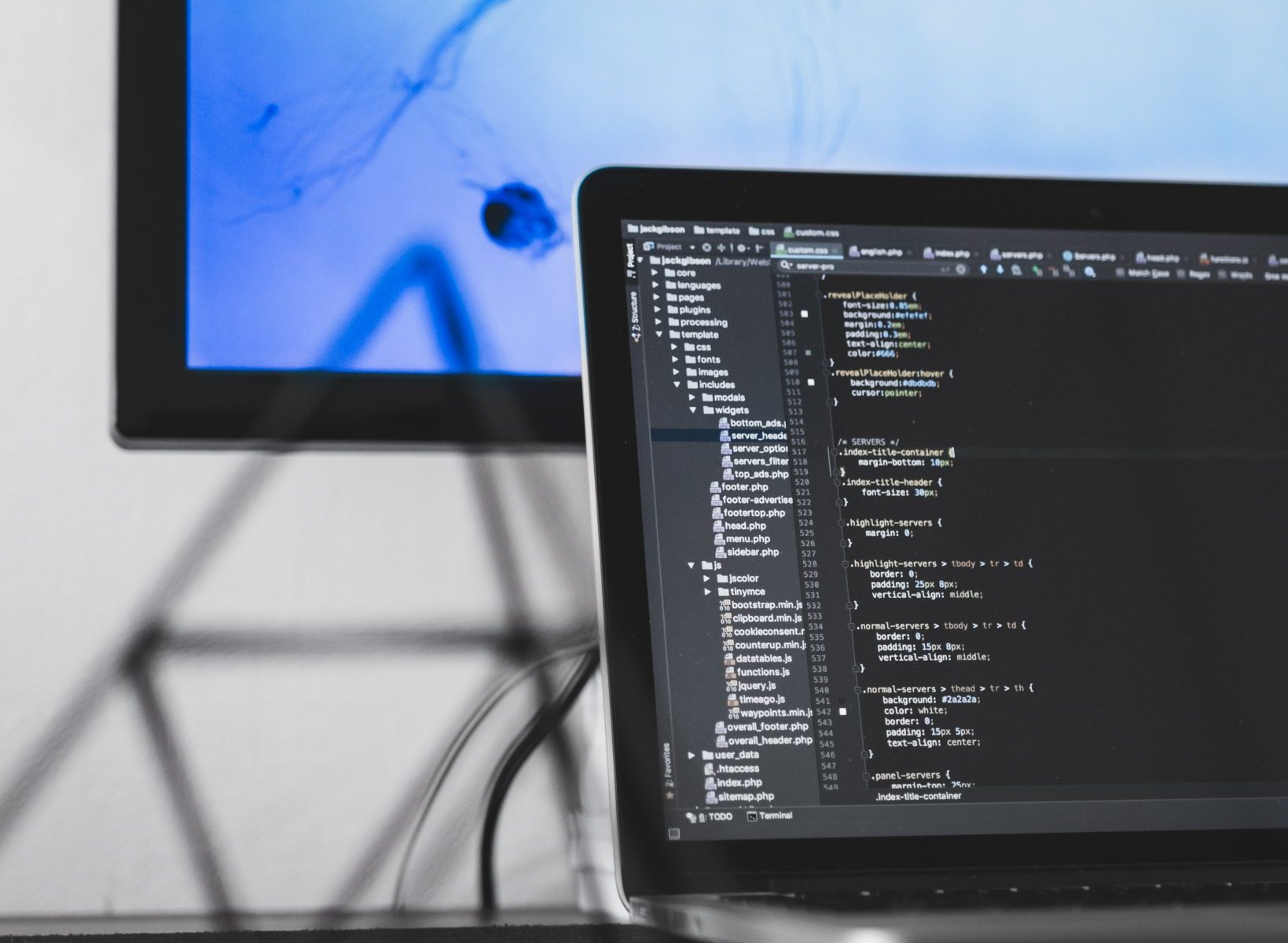 laptop software development